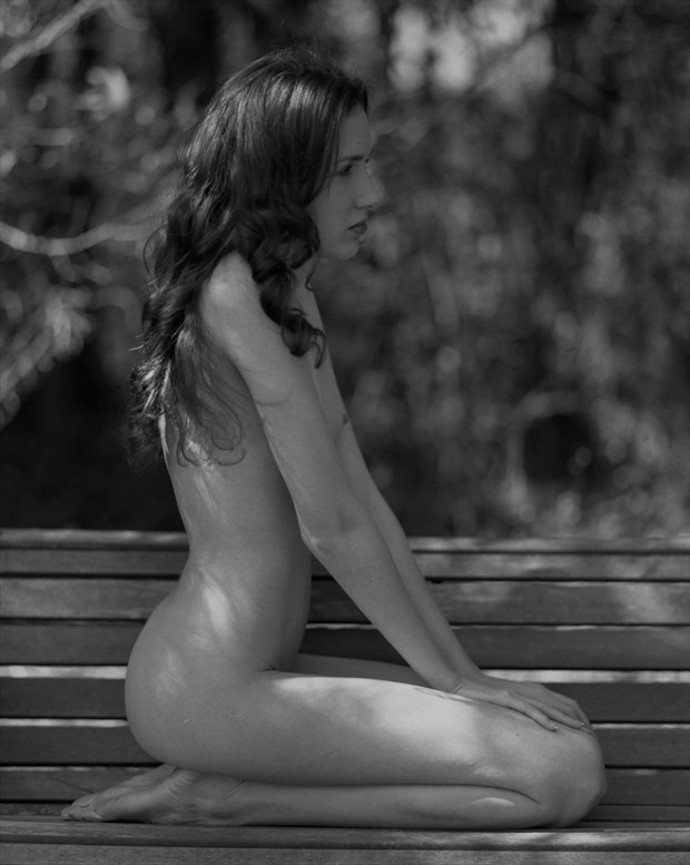 In the Pines Artistic Nude Photo print by Photographer Leland Ray