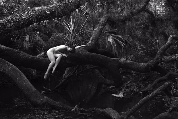 Lazy Oak Artistic Nude Artwork print by Photographer Chris Gursky