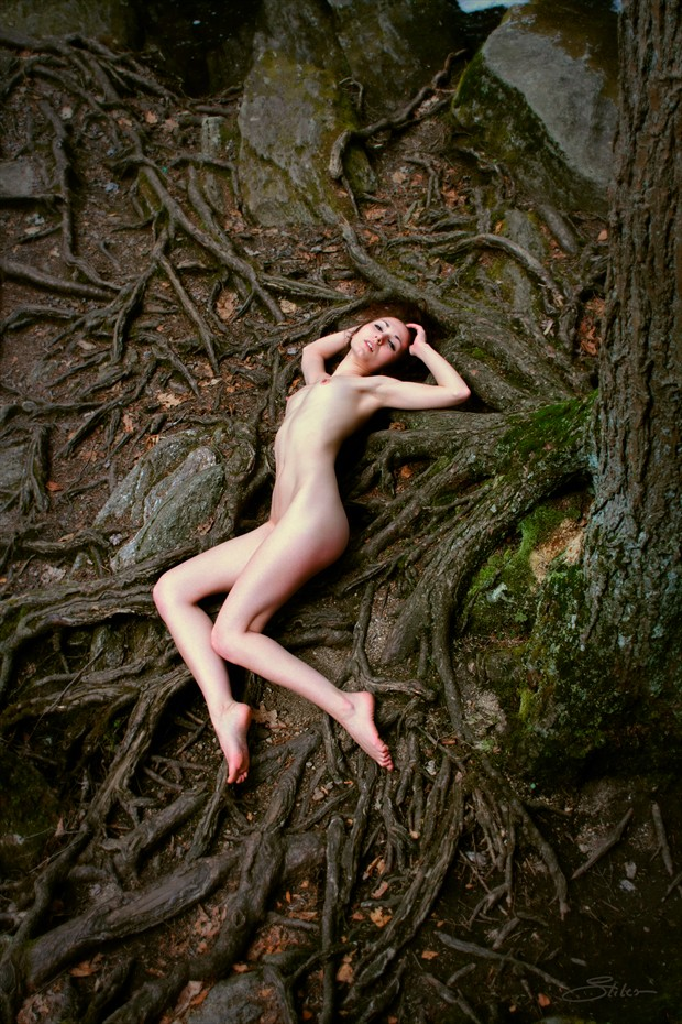 Lifeblood Artistic Nude Photo print by Artist Kevin Stiles