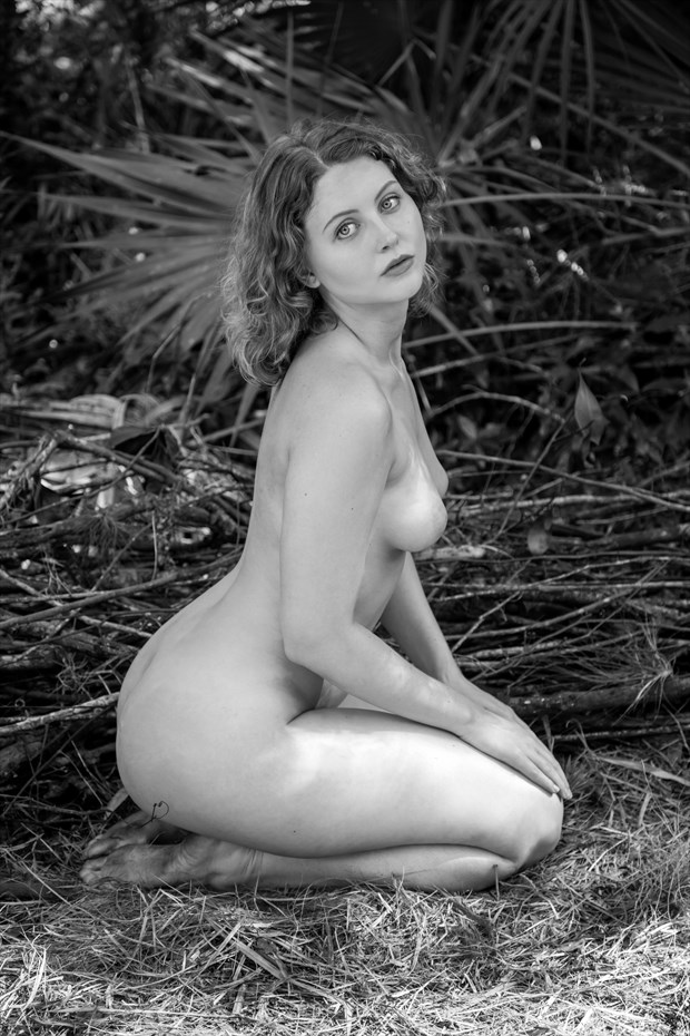 Lila Blue   The Line of Beauty and Grace Artistic Nude Photo print by Photographer Risen Phoenix