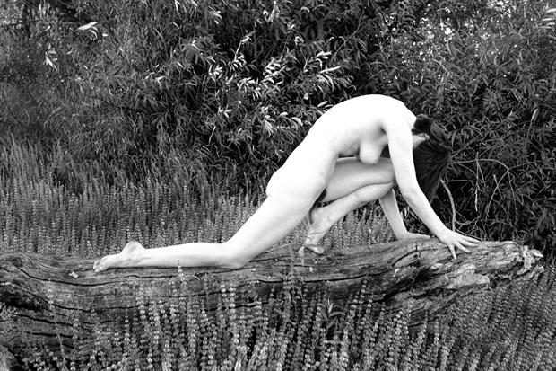 Log DaNCE Artistic Nude Photo print by Photographer Joe Klune Fine Art