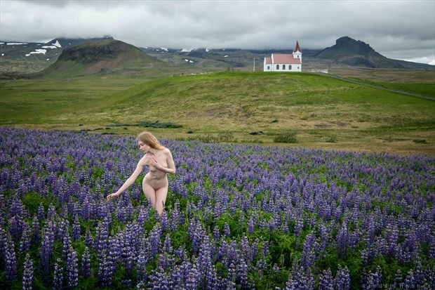 Lulu in the Lupine Artistic Nude Photo print by Photographer Randall Hobbet