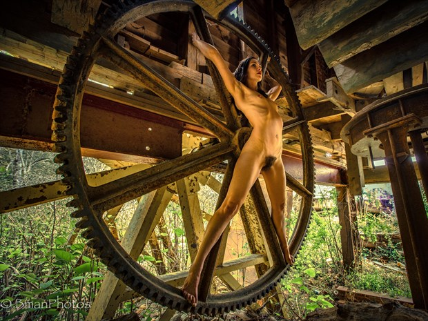 Melissa Troutt Artistic Nude Photo print by Photographer BmanPhotos