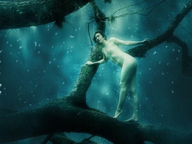 Mikki and the Deep Blue Sea Artistic Nude Artwork print by Photographer Chris Gursky