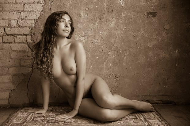 Monique Figure Study Artistic Nude Photo print by Photographer Risen Phoenix