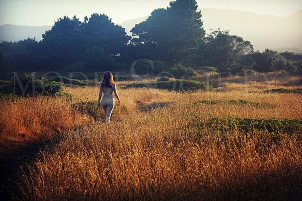 Morning Walk Artistic Nude Photo print by Artist AnneDeLion