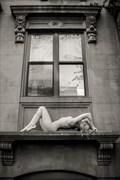 On a Window ledge Brooklyn NY
