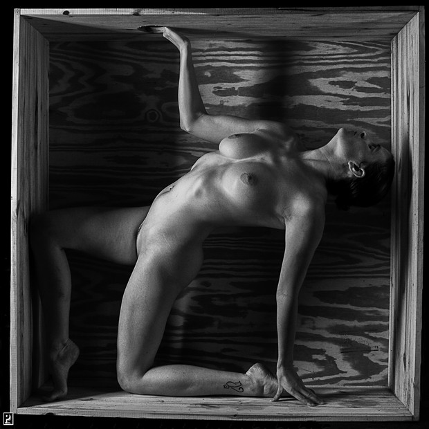 Out of the Box   Bent Artistic Nude Photo print by Photographer Thom Peters Photog