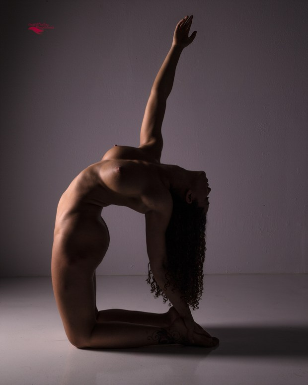 Reaching for the Stars Artistic Nude Artwork print by Photographer Miller Box Photo