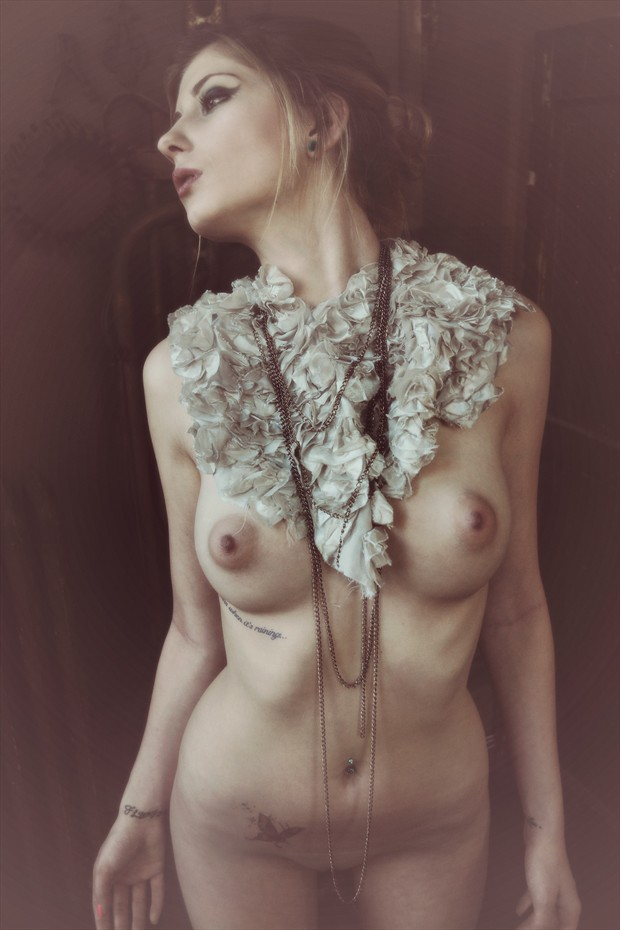 Ripped from a Dream Artistic Nude Photo print by Photographer JMAC