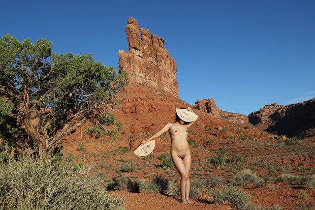 Rocks And Fans Artistic Nude Photo print by Photographer David Winge