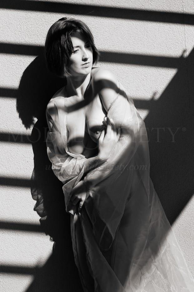 Shades and stripes Artistic Nude Photo print by Photographer Bill Irwin