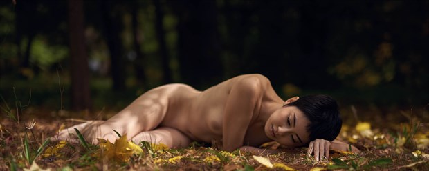 Sonya lays in the leaves Artistic Nude Photo print by Photographer Keith Persall