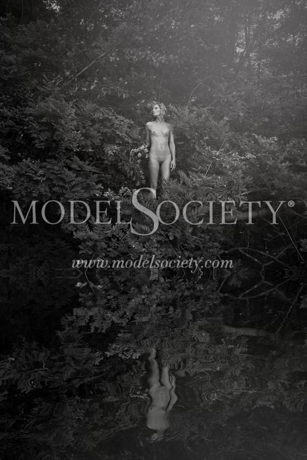 Stir Of Echos %232 Artistic Nude Photo print by Photographer Constantine Studios