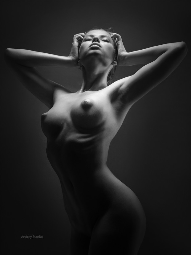 Studioworks Artistic Nude Photo print by Photographer Andrey Stanko