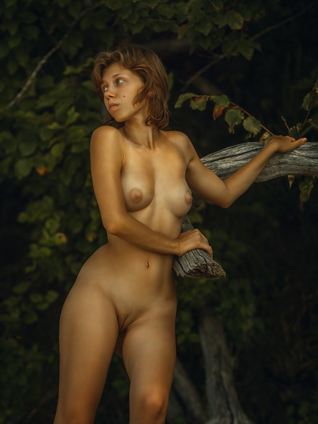 Summer Artistic Nude Photo print by Photographer dml