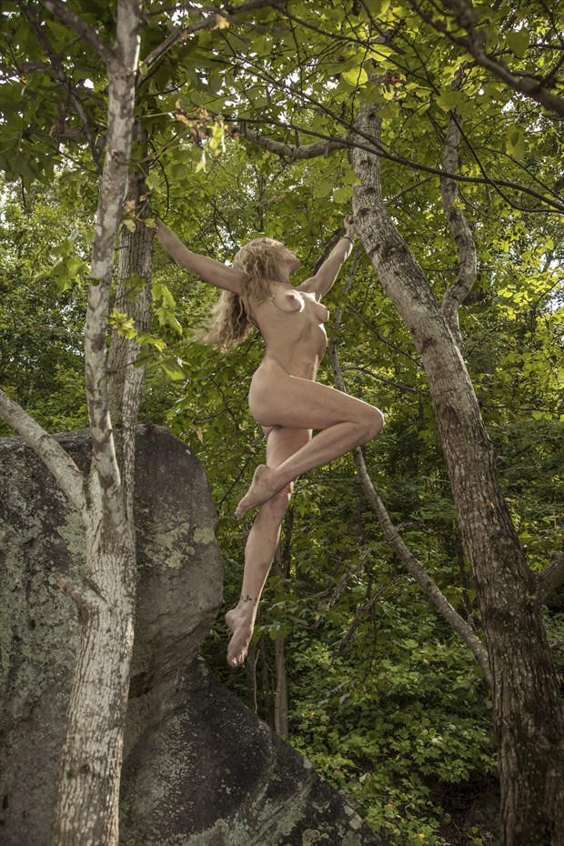 Suspended Artistic Nude Photo print by Photographer CurvedLight