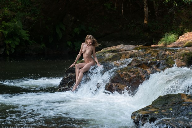 The Golden Nymph Artistic Nude Photo print by Photographer Randall Hobbet