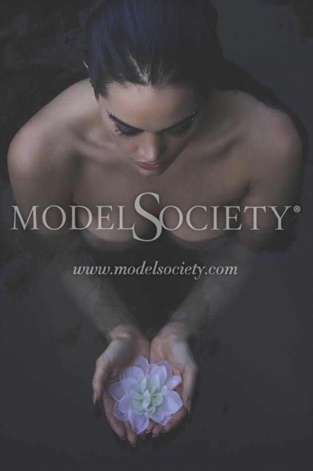 The Lotus Artistic Nude Photo print by Photographer Constantine Studios