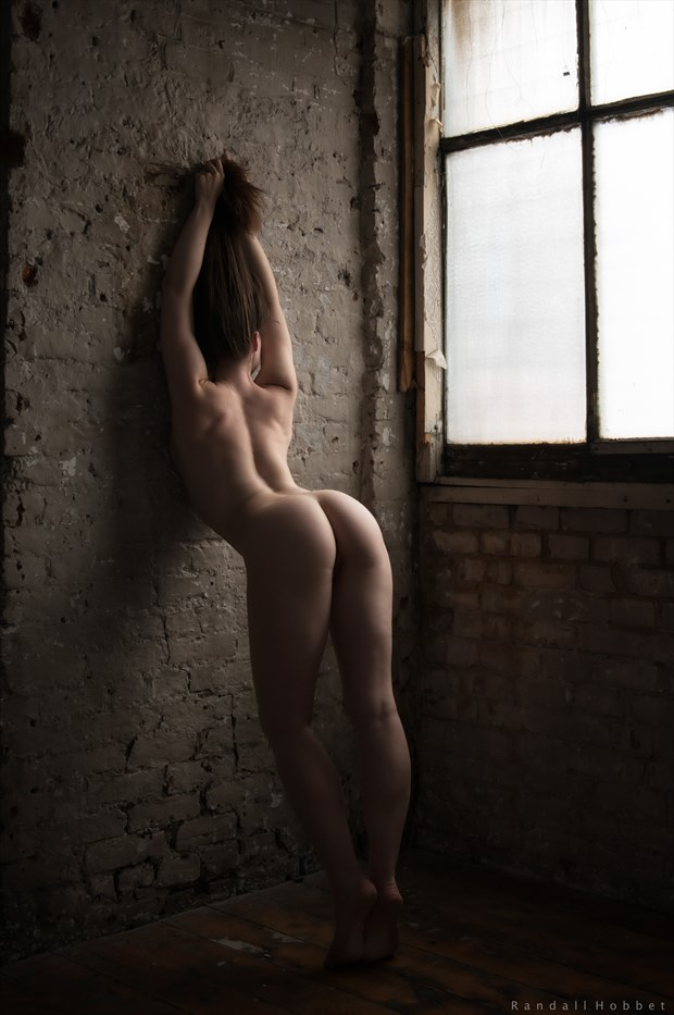 The lineaments of gratified desire Artistic Nude Photo print by Photographer Randall Hobbet