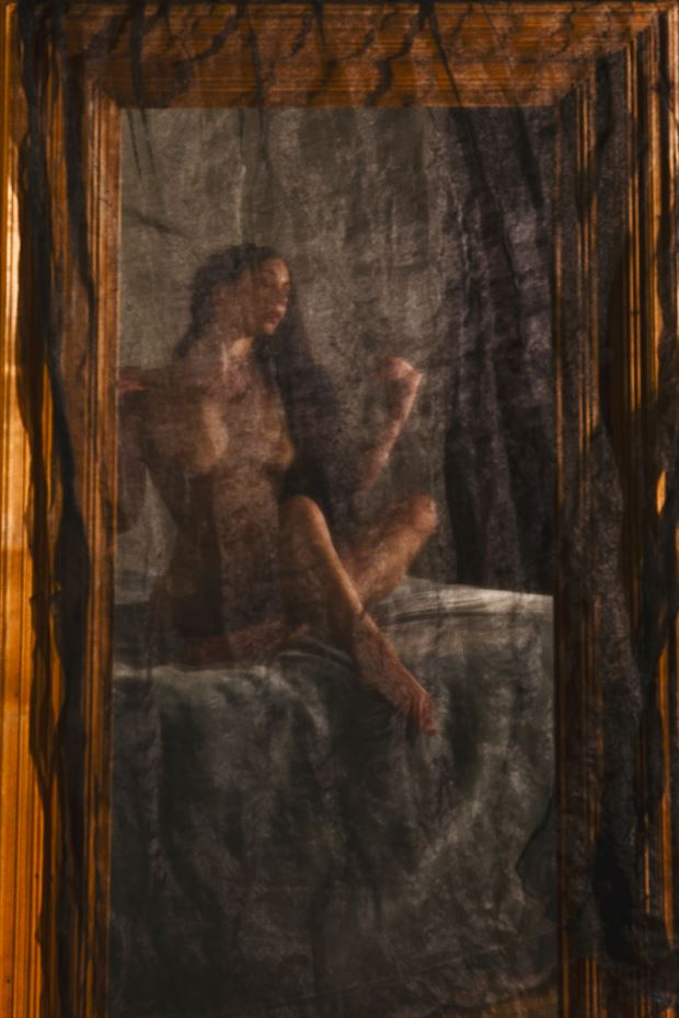 Through The Veil Artistic Nude Photo print by Photographer Philip Turner