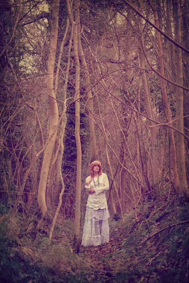 Titania in Mourning Nature Photo print by Photographer Whiteraven Photography