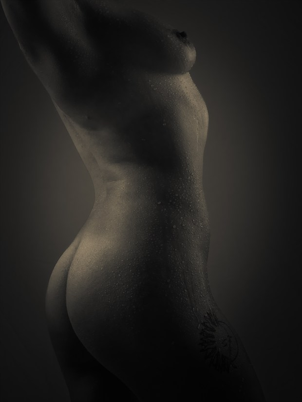 Wet with a Twist Artistic Nude Photo print by Photographer PhotoGuyMike