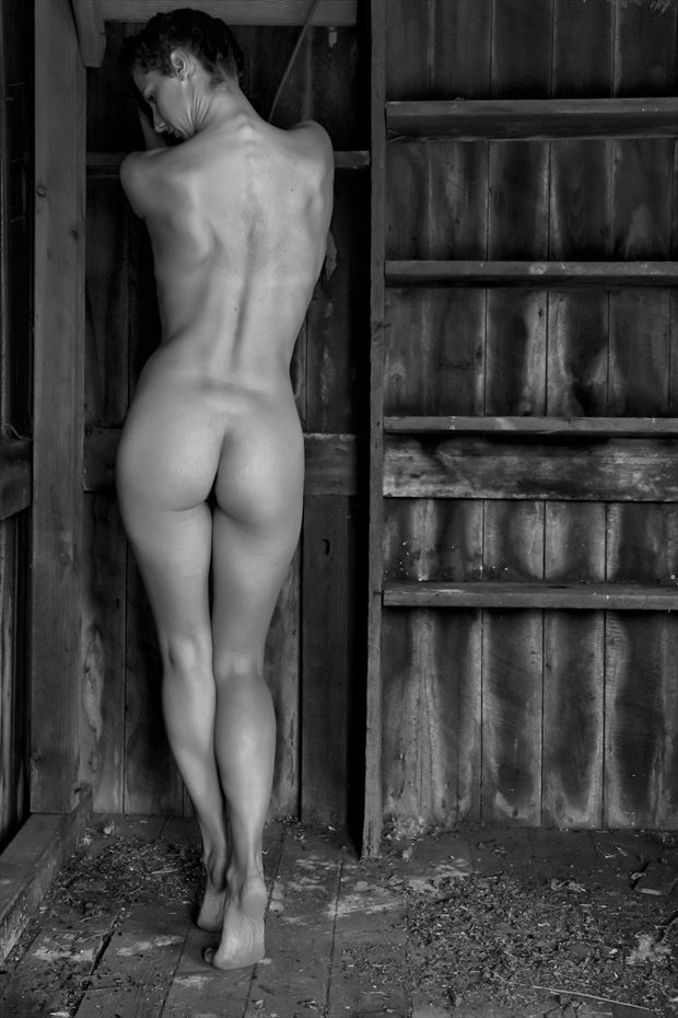 a contrast of forms artistic nude photo print by photographer philip turner
