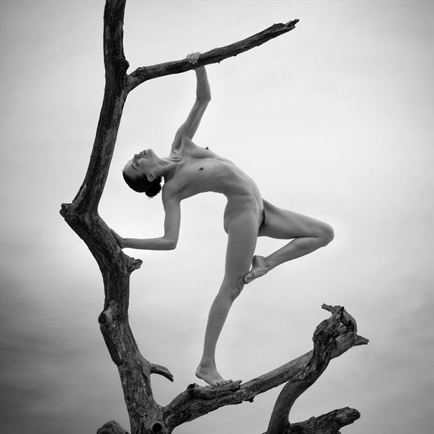 a salute to heaven artistic nude photo print by photographer louis sauter