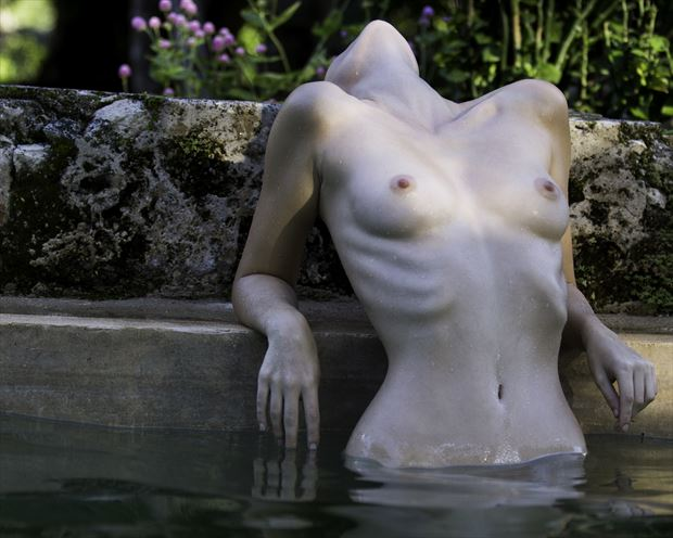 artistic nude natural light photo print by photographer lonnie tate
