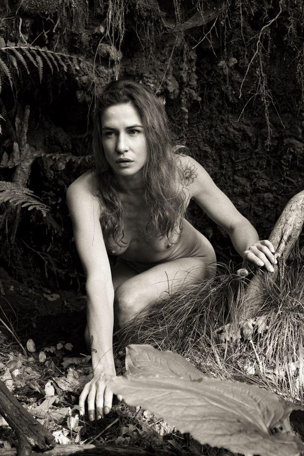 artistic nude nature photo print by photographer autumnbearphoto