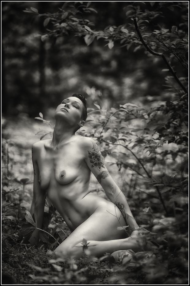 artistic nude nature photo print by photographer magicc imagery