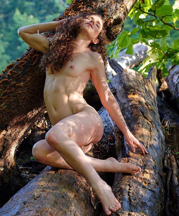 artistic nude nature photo print by photographer teb art photo