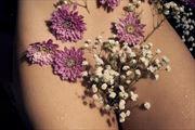 artistic nude sensual photo print by photographer j welborn