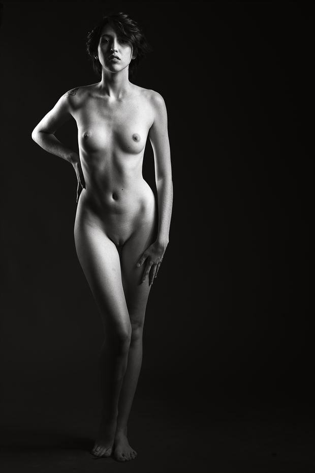 artistic nude studio lighting photo print by photographer depa kote