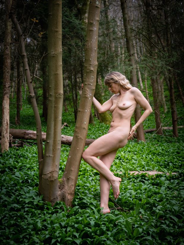 at one with the trees artistic nude photo print by photographer colin dixon
