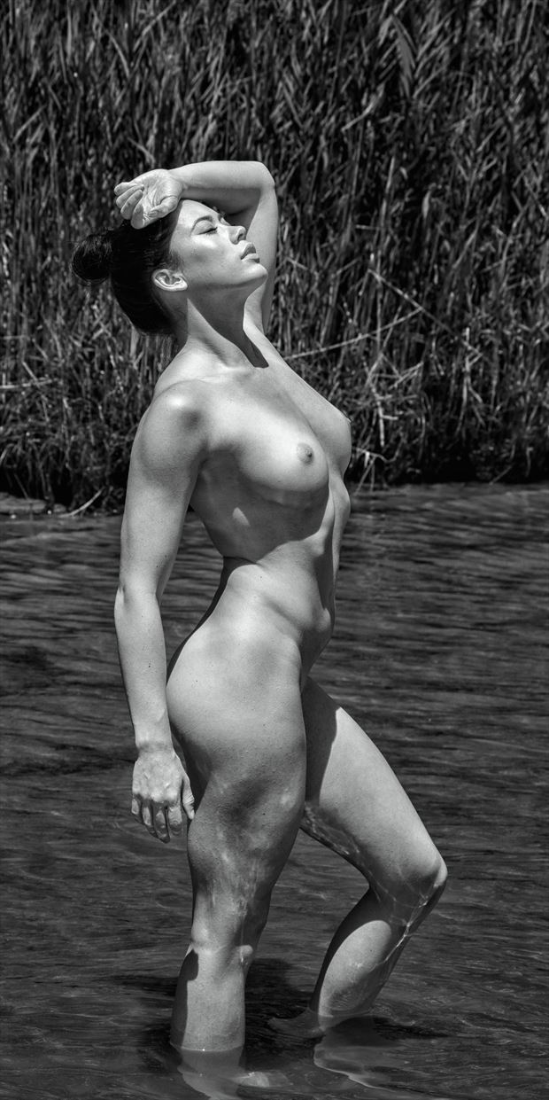back in the bay artistic nude photo print by photographer rick jolson