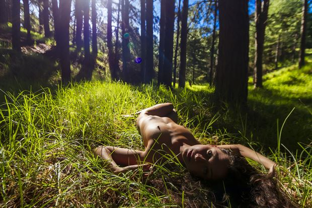 bathed in the natural artistic nude photo print by photographer opp_photog