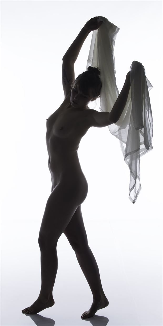 bodyscape artistic nude photo print by photographer arcis