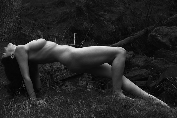 bridging the gap between human form and nature artistic nude photo print by photographer photorunner
