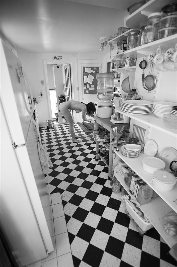 checkers in the kitchen artistic nude photo print by photographer michael grace martin