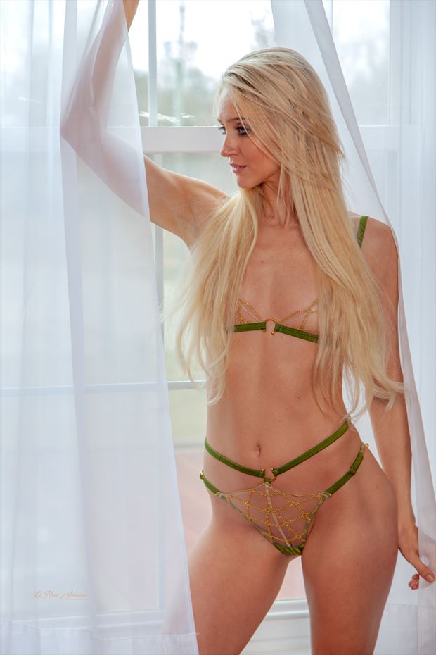 chelsea marie in green lingerie 2 lingerie photo print by photographer lamont s art works