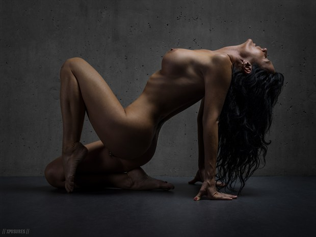 classic nude 1 Artistic Nude Photo print by Photographer xposures