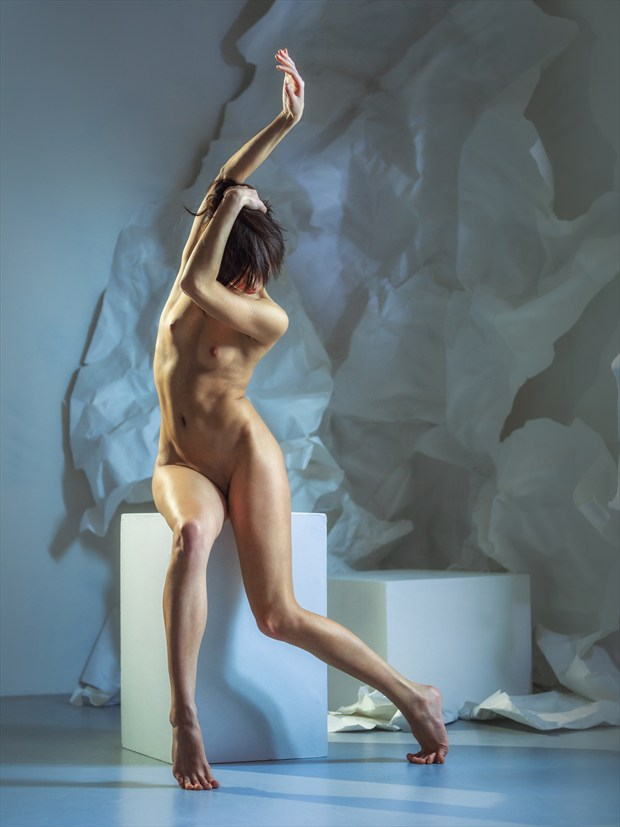 curves Artistic Nude Photo print by Photographer dml