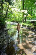 Dappled Creek