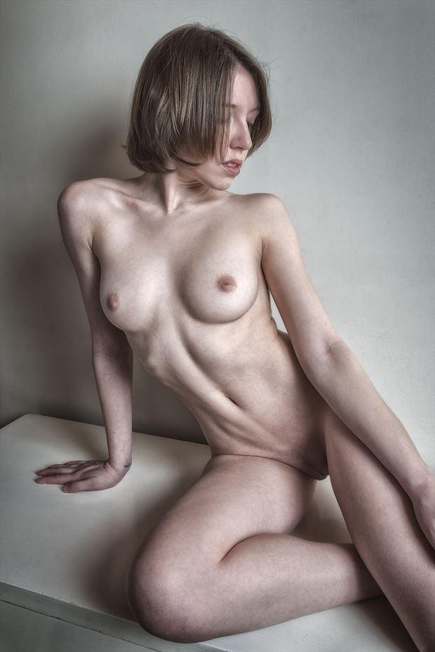 dresser series 2 2015 artistic nude photo print by photographer rick jolson