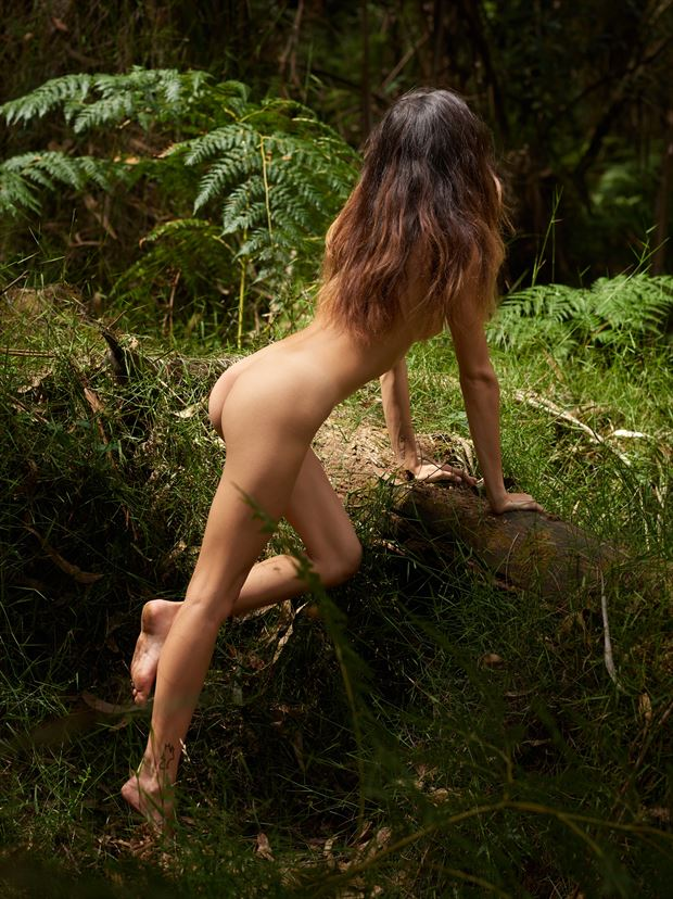 dryades the forest nymph artistic nude photo print by photographer tfa photography