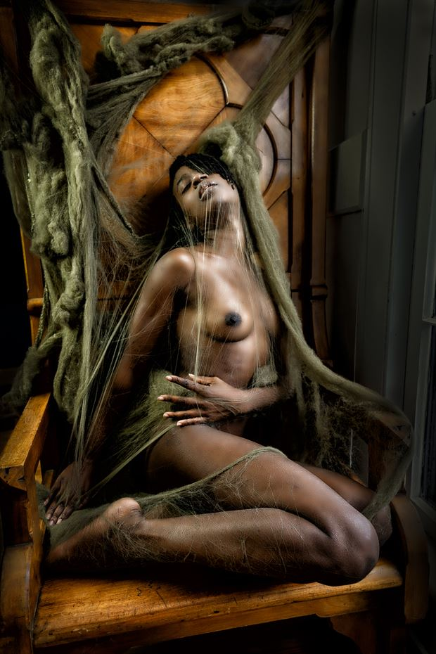 entangled ii artistic nude photo print by artist kevin stiles