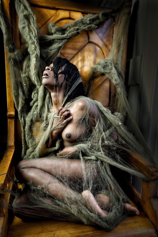 entangled iii artistic nude photo print by artist kevin stiles