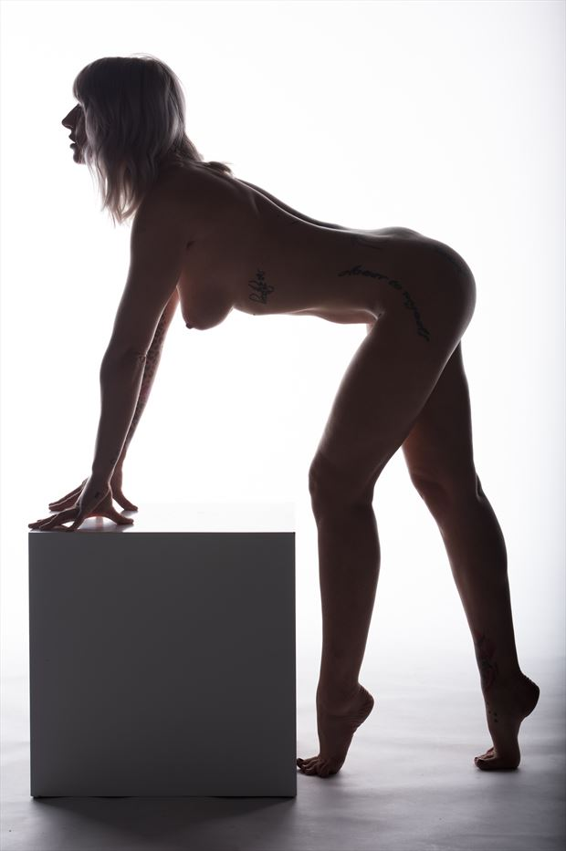 erotic and body curves artistic nude photo print by photographer arcis
